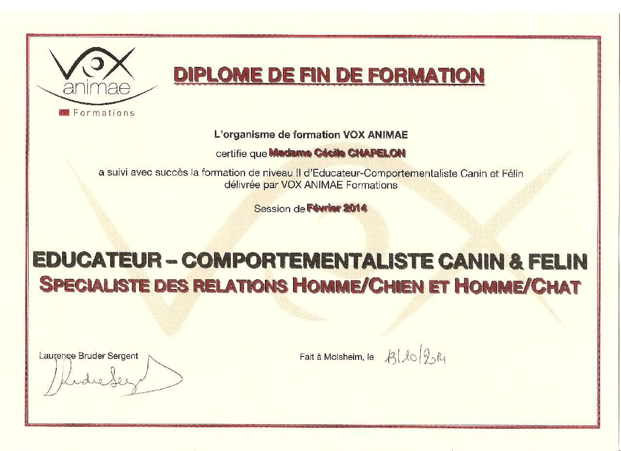 Actualites 13102014 Diplome VOX ANIMAE