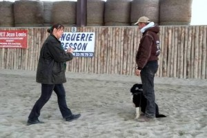 Animal-Emoi-stage-horse-and-dog-trail-Jérémy-et-Bucky
