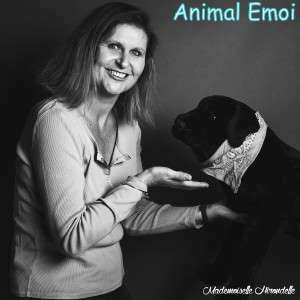 Animal Emoi Cécile CHAPELON